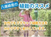 八進緑産の植栽のススメ!